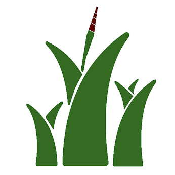 Aloe Sana - Sicilia
